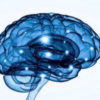 איך מיינדפולנס ומדיטציה משפיעים על המח